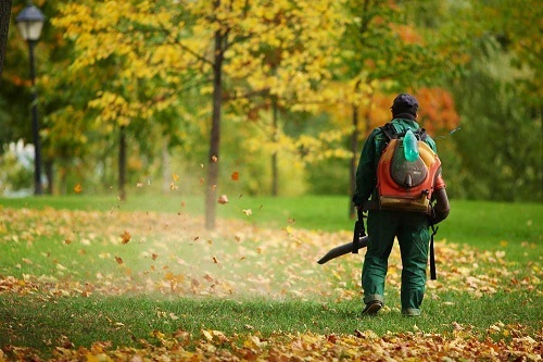 Man In Woods Using Backpack Leaf Blower