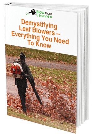 Guide To Leaf Blowers