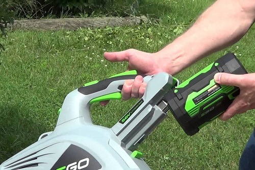 Cordless Leaf Blower In Hand