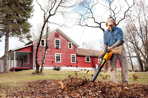 Man With Hearing Protection Using Leaf Blower